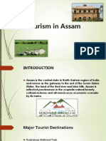 Tourism in Assam