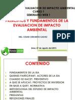 Seminarioweb Principiosyfundamentosdelaeia 150827203931 Lva1 App6891