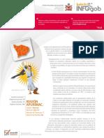Boletin Infogob 31 - Copia