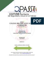 Copasst v2 2019..Comite Paritario