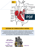 1. Fisiopatología Cardiovascular