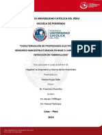 2016_Rojas_Caracterizacion-propiedades-electronicas.pdf