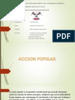 ACCION POPULAR2
