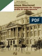 Brasil. BN. Plan gerenciamiento de riesgos.pdf