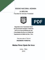 PALMERAS DE MADRE DE DIOS..pdf