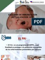 Esquema de Inmunizaciones 2017