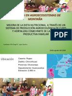 MEJORA DE LA DIETA NUTRICIONAL.ppt