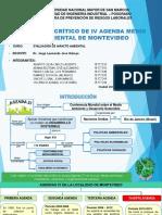 Agenda 21 Montevideo 2013-2019 Final