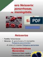 Microbiologia Med. Semana  5 Neiseria.pptx