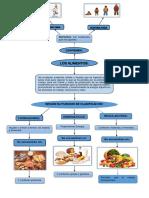 Concepto y Clasificacion de Los Alimentos