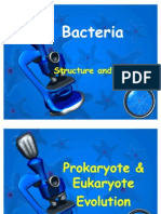 Chapter 20 - Bacteria Lecture PPT