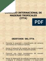Criterios & Indicadores OIMT 2005