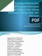 Random Amplified Polymorphic DNA (RAPD) Dalam