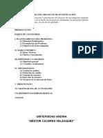 Mendocina Andes 2019