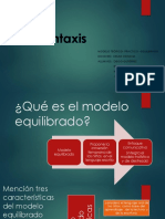 Presentacion_SilviaPavez