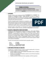 TDR PIP Turismo Interno Huanta.docx