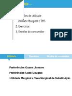 A escolha do consumidor - SLIDE 3.pdf