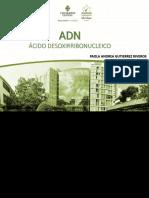 PTT ADN