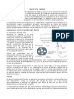 ENDOSCOPIA FLEXIBLE.docx