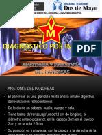 8. Anatomia y Patologia Del Pancreas