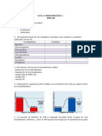Guia 4 Bionergetica BIOL166 2018-2