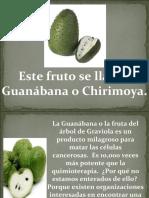 chirimoya-111214142838-phpapp01.pdf