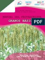 Granos_Basicos.pdf