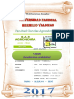 YACONNNN.docx
