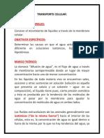 TRANSPORTE CELULAR.docx