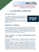 Cirugia_cordales[1].pdf