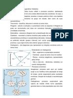 Aula Filogenia e Cladistica
