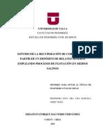 Memoria_MS.pdf
