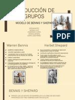 Modelo de Benes y Shepard