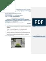 formato_informe_laboratorio8.docx