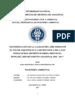 """Determinación de La Calidad Del Aire Mediante El Uso de Liquenes en La Microcuenca Del Lago Pomacochas, Distrito Florida, Provincia Bongará, Departamento Amazonas, 2016 - 2017"""""""