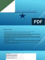 DIAGRAMA TRIANGULAR.pptx