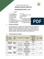 PROGRAMACION - 2016 1.doc