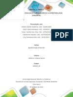 Tarea_5_Trabajo colaborativo_Grupo_358009_45 (2).docx
