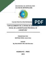PLAN DE PRACTICAS.docx
