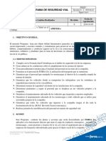 PROGRAMA DE SEGURIDAD VIAL.docx