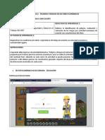 formato_peligros_riesgos_sec_economicos_com.docx