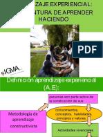 aprendizajeexperiencialpormario2016-160223031137.pdf