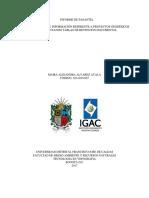 Clasificación de Información Referente a Proyectos Geodésicos