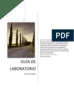 GUIAS QUÍMICA INORGÁNICA.pdf