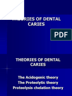 2.1 Theories of Dental Caries