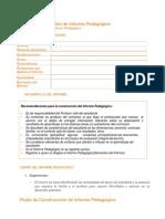 4Pauta de Construcción de Informe Pedagógico - CIERRE DEL INFORME PEDAGOGICO .docx