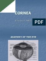 Corneal Ulcer Dr.iz