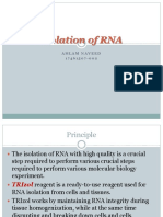Isolation of RNA
