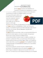 DEFINICIÓN DETOMATE.docx