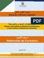 GESTION_PME-PMI.pdf